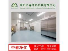 实验室洁净工程 药厂食品厂净化工程手工方案