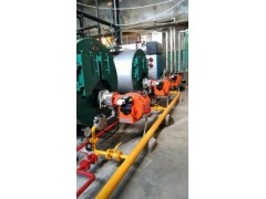 广州雄狮锅炉——质量好的燃油、燃气卧式蒸汽锅炉提供商,汕尾燃油、燃气卧式蒸汽锅炉