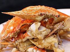 实惠的梳子蝎供应,就在乐米快餐|梳子蟹多少钱