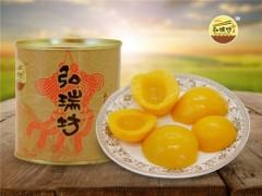 山东口碑好的水果罐头【供应】|草莓罐头招商加盟