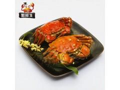 郑州阳澄湖大闸蟹专卖