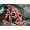 别墅鱼池养锦鲤价格|杭州华池锦鲤园林为您提供专业的日本纯种锦鲤鱼