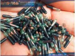 藏獒动物芯片,狐狸电子标签,绵羊电子标记