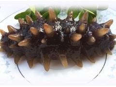 海丰加拿大深海野生海参