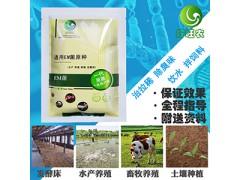 发酵饲料喂猪专用的EM菌发酵剂