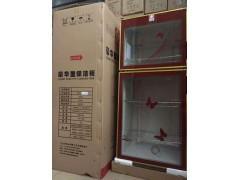 臭氧杀菌低温消毒碗柜立式家用立式双门消毒柜 会销专用