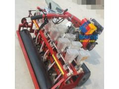 可推荐的沧州地区各种蔬菜播种机厂家价格-冀林机械