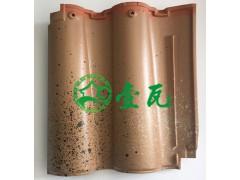 日本進口波形瓦  雙龍瓦 M型洋瓦 西式風情