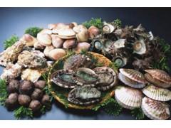 盘锦海鲜哪家性价比高便宜又好吃的海鲜食品哪家好吃推荐实惠的盘锦海鲜餐厅是盘锦好吃又便宜的海鲜酒店