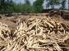 成都专业的废木材回收哪家好_废木材回收价格