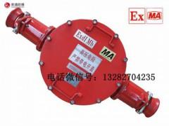 BHG1-315/10-2G,礦用高壓接線盒,二通高壓接線盒