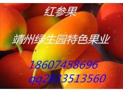 *益、稀有水果紅參果種子,種植園直銷