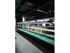 广州流水线-广州电商流水线-流水线厂家