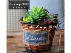 德州柳編花籃,專業的柳編花籃提供商—歐拉農業