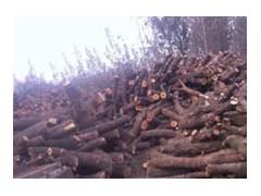 廠價直供大量優質烤鴨劈柴
