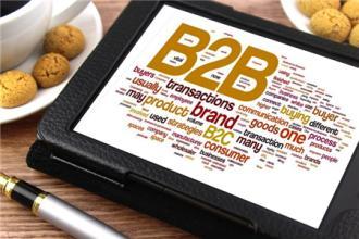國外的B2B平臺和國內的差距在于行業發展不成熟