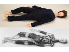 X射线仿真人培训模体X射线仿真人教学模体X射线模拟人