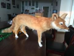 出售仿真動物 動物模型制作 自貢偉博