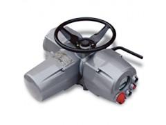 BIFFI執行器 ICON 2000 v4系列電動執行器