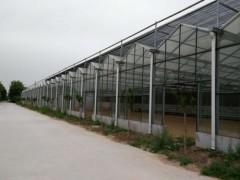 【分享好品質】智能溫室大棚//日光溫室大棚//生態餐廳//青州旭豐溫室工程有限公司