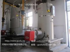 江蘇CLHS立式燃氣熱水鍋爐