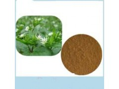 白花蛇舌草提取物 清热解毒 活血利尿 特价优惠