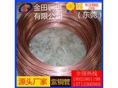 T1紫銅管 單芯銅線 c1100紫銅排 銅線燈銅線材