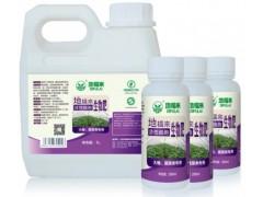 蔬菜大棚肥料地福来生物肥增产30%提高口感有机品质