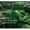 河南郑州盖土网厂家批发/河南郑州盖土网销售价格