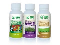 地福来生物肥水稻旱育秧栽培技术