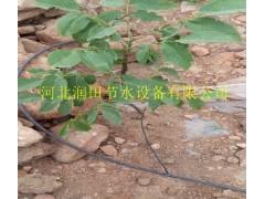 山西忻州市神池县果园灌溉(稳流器滴头)小管出流