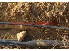 山西忻州市水肥一体化滴灌厂家 神池县桃树果园灌溉