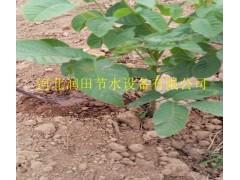 山西忻州市神池县果园灌溉设备滴灌整套系统出售
