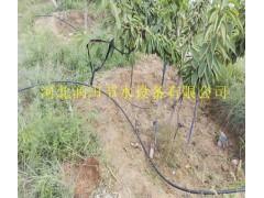 山西忻州市神池县红枣果园灌溉小管出流亩均造价