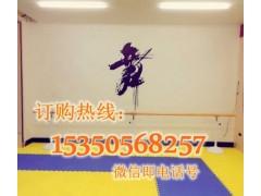 山西朔州墙上固定式舞蹈把杆报价批发商专业制作