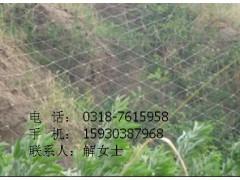 制造被动护栏网可信赖厂家%黑龙江瑞亿护栏网供应
