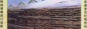 小麦入仓粮膜 自动封口机 特价供应