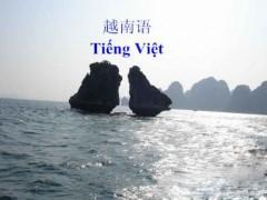 供應越南語筆譯