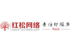 廣東紅松網絡信息技術有限公司怎么樣