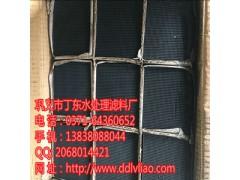 泰安天鹅湖风景区蜂窝状活性炭滤网