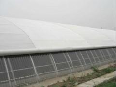 [今日必看]河南省工程大棚保溫被批發+防雨雪保溫被價格