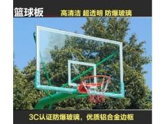 新國標籃球架成人籃球架戶外移動 專業比賽室外籃球框架落地式