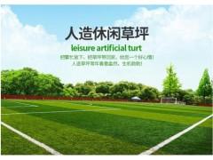 仿真绿植人造草坪  彩色跑道户外人工假草皮塑料绿色地毯