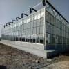 全国供应温室大棚  玻璃温室 玻璃温室大棚价格 大棚骨架