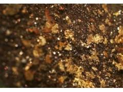 铂思特提高高硫含金矿石精矿品位的选矿方法,含砷金硫精矿提金