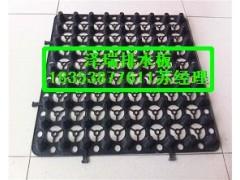 供應深圳車庫排水板【價格大優惠】綠化種植蓄排水板