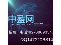 天津中盈網招公司代理中盈網
