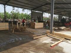 佛山木材市場 批發建筑夾板 模板