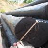 厂家供应电力通讯油木杆 防腐木杆 木质电线杆