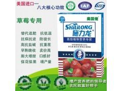 进口施力龙草莓专用叶面肥
